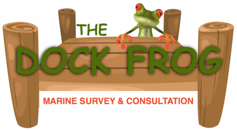 The Dock Frog – Marine Survey & Consultation
